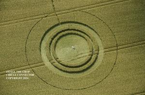 (c) Crop Circle Connector